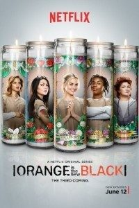 Download Orange Is the New Black (Season 7) Dual Audio {Hindi-English} 720p [250MB] 18+