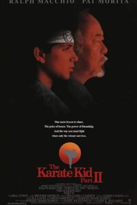 Download The Karate Kid Part II (1986) Dual Audio {Hindi-English} 720p [900MB]