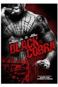 Download Black Cobra (2012) Dual Audio (Hindi-English) 480p [300MB] || 720p [800MB]