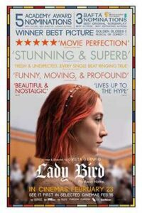 Download Lady Bird (2017) Dual Audio {Hindi-English} 480p [210MB] || 720p [780MB] || 1080p [1.7GB]