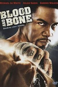Download Blood and Bone (2009) Dual Audio (Hindi-English) 480p [300MB] || 720p [1GB]