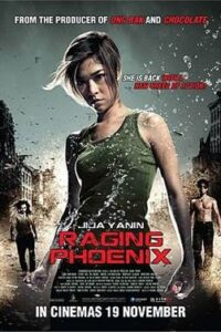 Download Raging Phoenix (2009) Dual Audio (Hindi-English) 480p [400MB] || 720p [1GB]