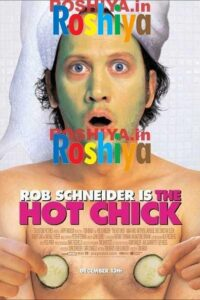 Download The Hot Chick 2002 480p - 720p Web-DL English